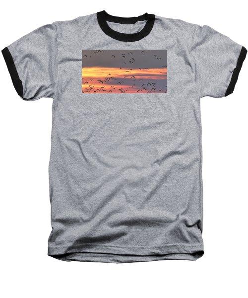 Lapwings At Sunset Baseball T-Shirt by Jeff Townsend