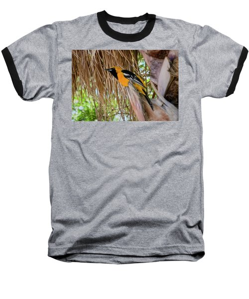 Male Hooded Oriole H17 Baseball T-Shirt by Mark Myhaver