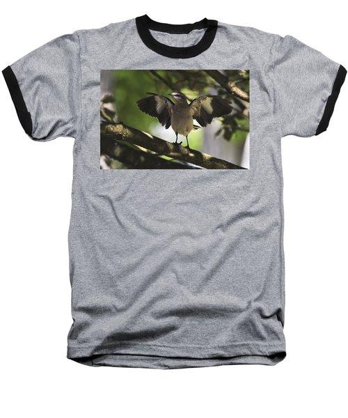 Mockingbird  Baseball T-Shirt by Terry DeLuco
