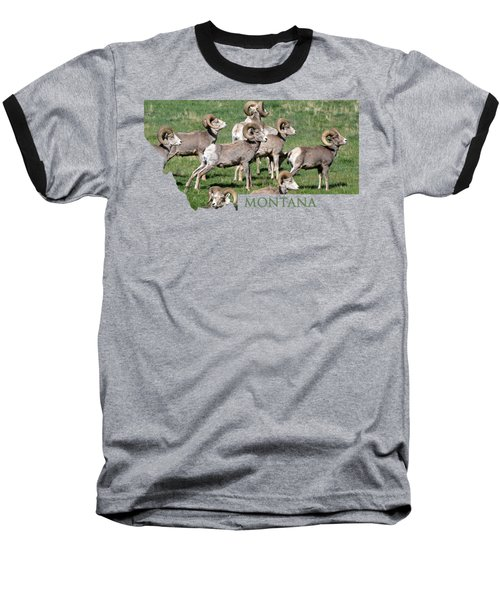 Montana -bighorn Rams Baseball T-Shirt by Whispering Peaks Photography
