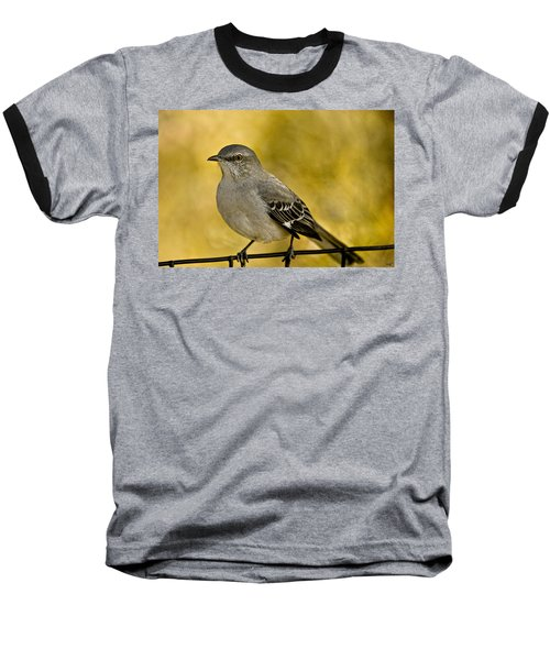 Northern Mockingbird Baseball T-Shirt by Chris Lord