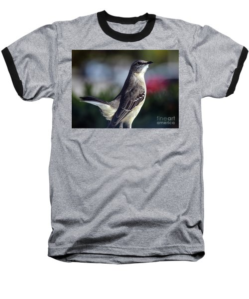 Northern Mockingbird Up Close Baseball T-Shirt by William Tasker