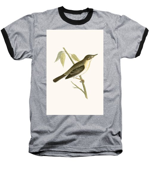 Olivaceous Warbler Baseball T-Shirt by English School