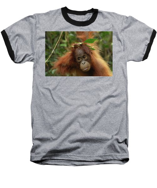 Orangutan Pongo Pygmaeus Baby, Camp Baseball T-Shirt by Thomas Marent