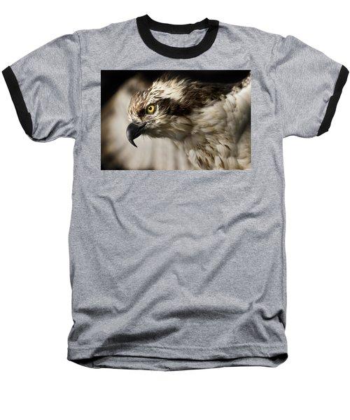 Osprey Baseball T-Shirt by Adam Romanowicz