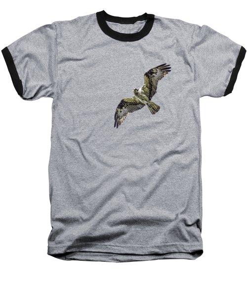 Osprey Overhead Baseball T-Shirt by Nick Collins