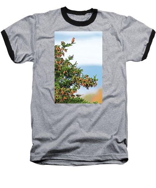 Out On A Limb # 2 Baseball T-Shirt by Matt Plyler