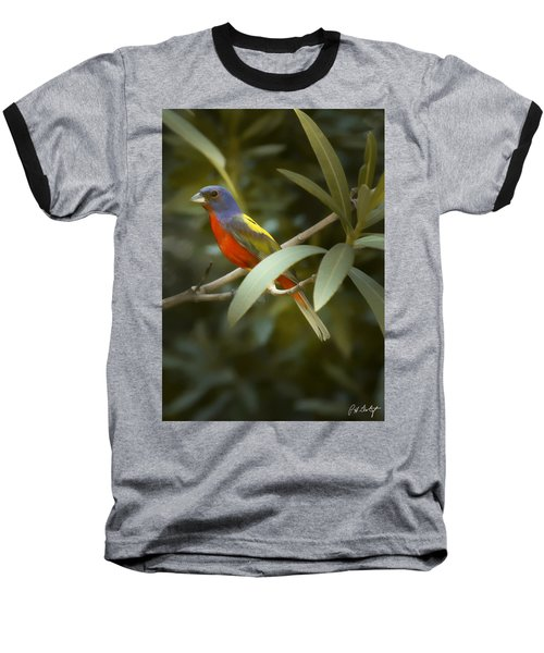 Painted Bunting Male Baseball T-Shirt by Phill Doherty