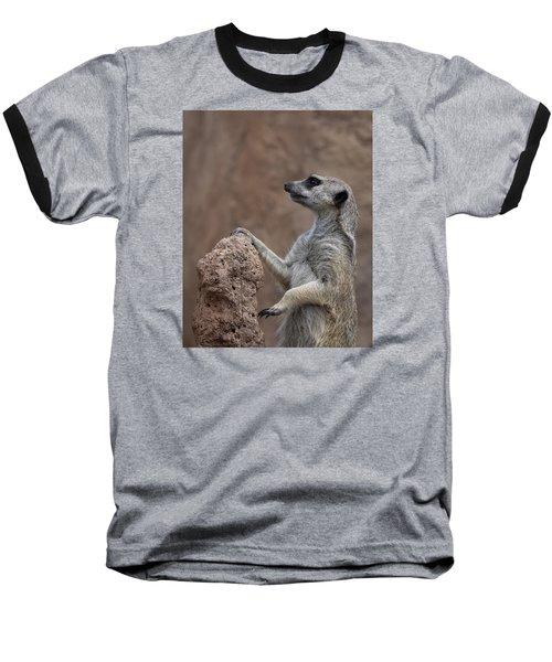 Pose Of The Meerkat Baseball T-Shirt by Ernie Echols
