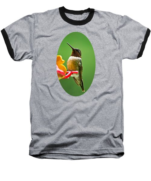 Rainy Day Hummingbird Baseball T-Shirt by Christina Rollo