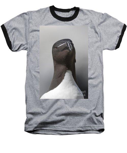 Razorbill Baseball T-Shirt by Karen Van Der Zijden