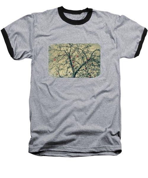 Red Apples In Empty Garden Baseball T-Shirt by Konstantin Sevostyanov