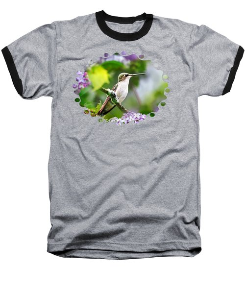 Ruby-throated Hummingbird-1 Baseball T-Shirt by Christina Rollo