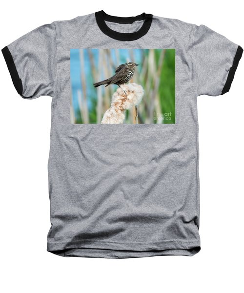 Ruffled Feathers Baseball T-Shirt by Mike Dawson