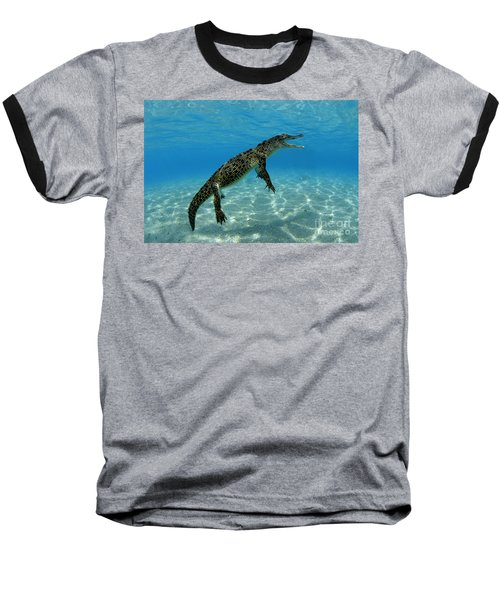 Saltwater Crocodile Baseball T-Shirt by Franco Banfi and Photo Researchers
