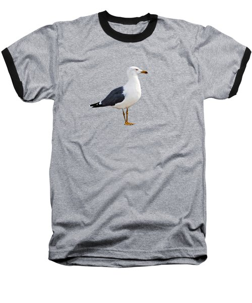 Seagull Portrait Baseball T-Shirt by Sue Melvin