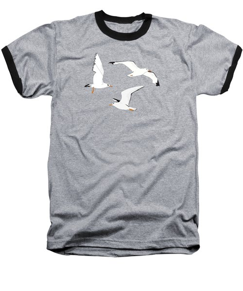 Seagulls Gathering At The Cricket Baseball T-Shirt by Elizabeth Tuck