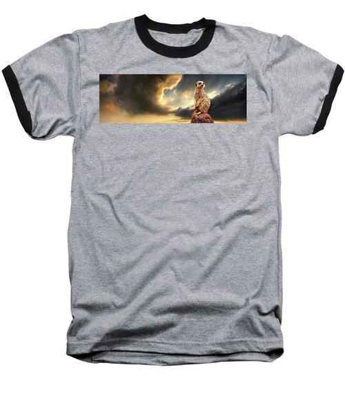 Sentry Duty Baseball T-Shirt by Meirion Matthias