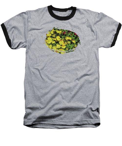 Smiling Daisies Baseball T-Shirt by Thom Zehrfeld