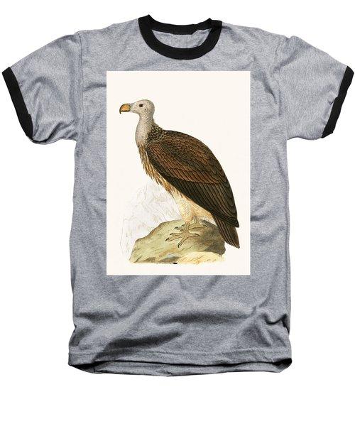 Sociable Vulture Baseball T-Shirt by English School