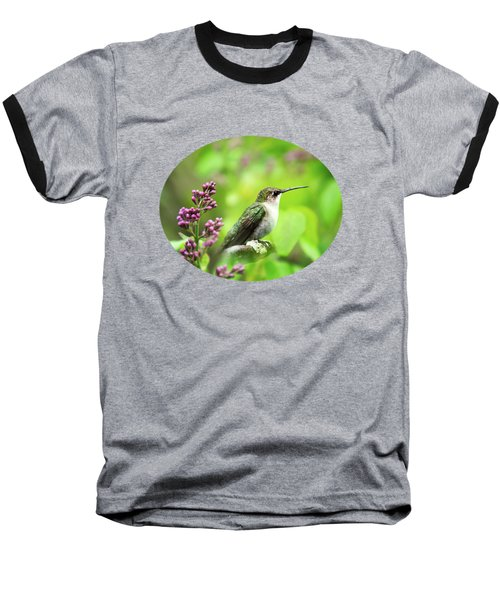 Spring Beauty Ruby Throat Hummingbird Baseball T-Shirt by Christina Rollo