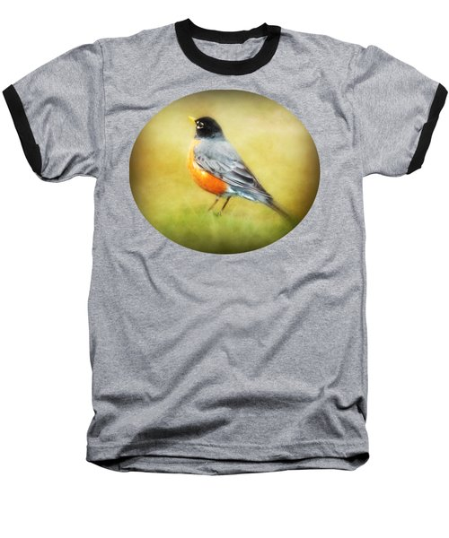 Spring Robin Baseball T-Shirt by Anita Faye