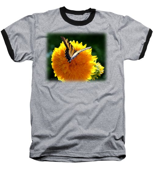 Swallowtail On Sunflower Baseball T-Shirt by Korrine Holt