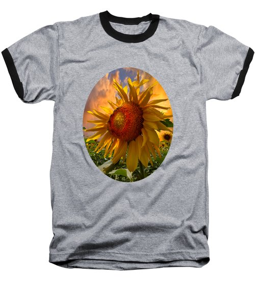 Sunflower Dawn In Oval Baseball T-Shirt by Debra and Dave Vanderlaan