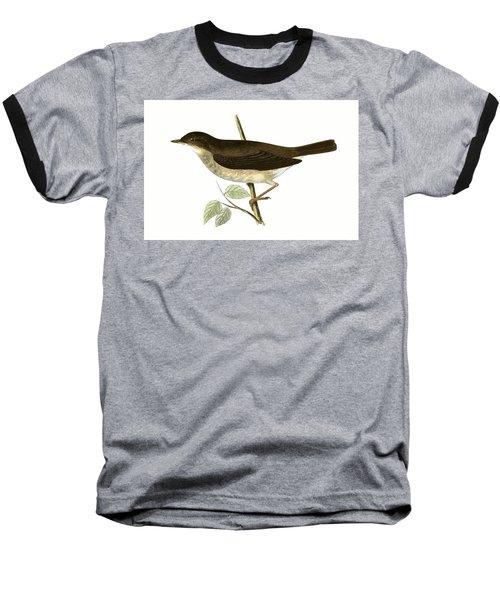 Thrush Nightingale Baseball T-Shirt by English School