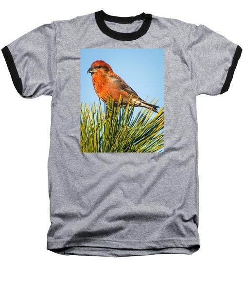 Tree Top Baseball T-Shirt by John Crookes