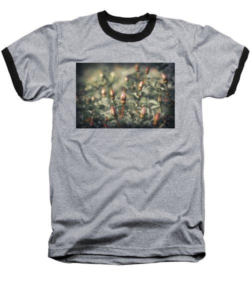 Unblown Rose Bush Baseball T-Shirt by Konstantin Sevostyanov