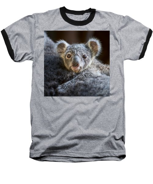 Up Close Koala Joey Baseball T-Shirt by Jamie Pham