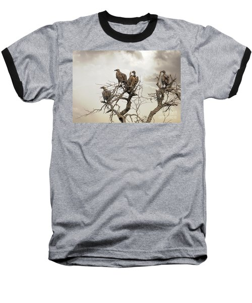Vultures In A Dead Tree.  Baseball T-Shirt by Jane Rix