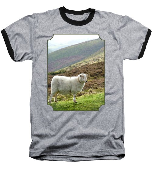 Welsh Mountain Sheep Baseball T-Shirt by Gill Billington