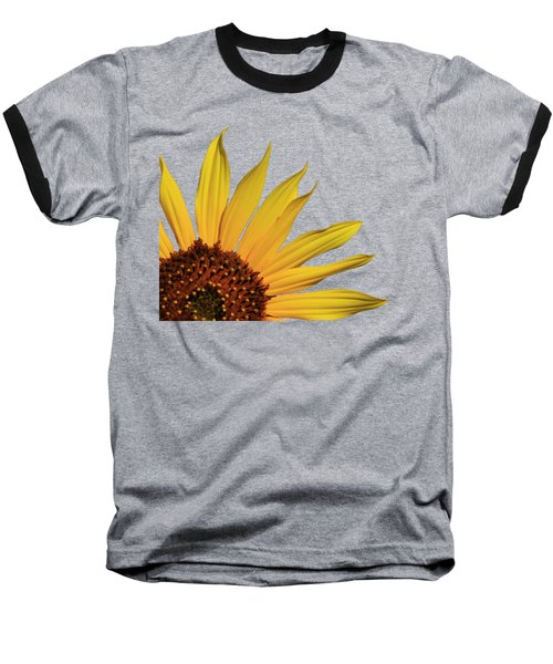 Wild Sunflower Baseball T-Shirt by Shane Bechler