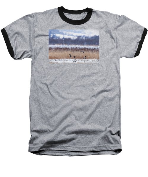 Winter Lapwings Baseball T-Shirt by Liz Leyden