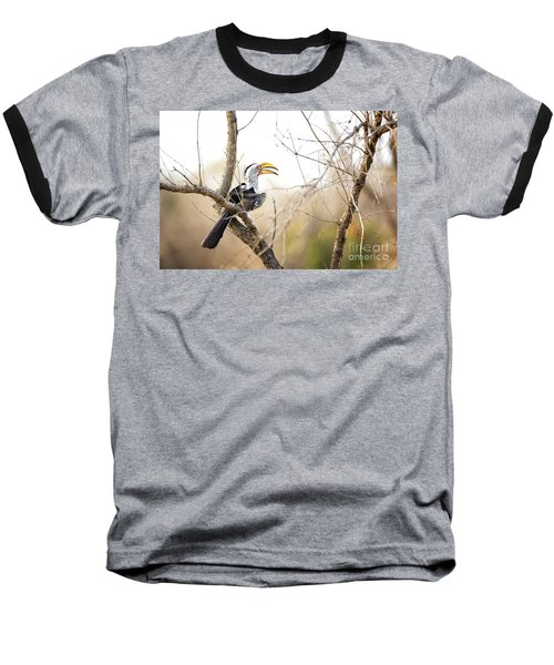 Yellow-billed Hornbill Sitting In A Tree.  Baseball T-Shirt by Jane Rix