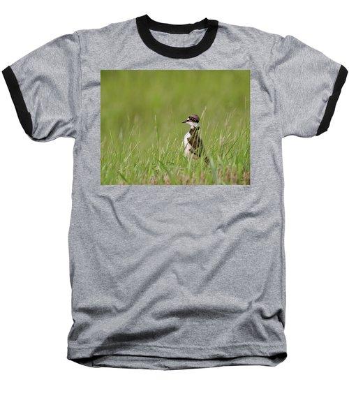 Young Killdeer In Grass Baseball T-Shirt by Mark Duffy