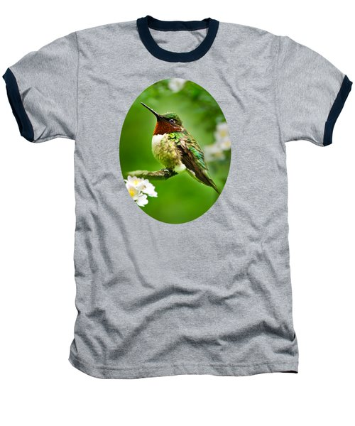 Fauna And Flora - Hummingbird With Flowers Baseball T-Shirt by Christina Rollo