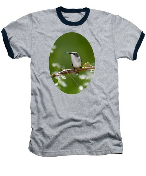 Meadow Hummingbird Baseball T-Shirt by Christina Rollo