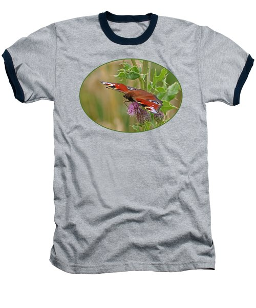 Peacock Butterfly On Thistle Baseball T-Shirt by Gill Billington