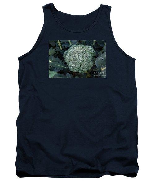Broccoli Tank Top by Robert Bales