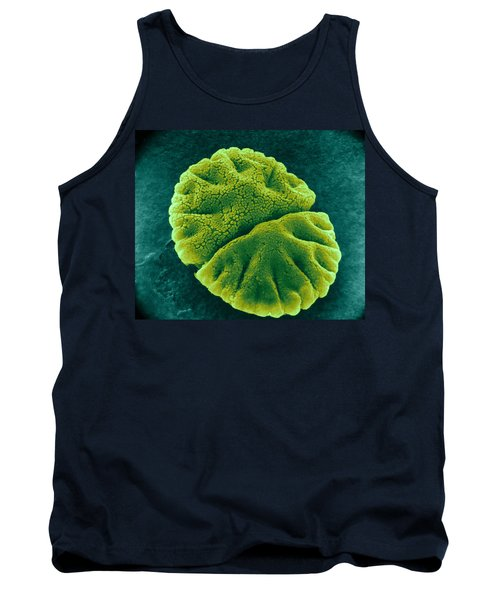 Tank Top featuring the photograph Micrasterias Angulosa, Algae, Sem by Science Source