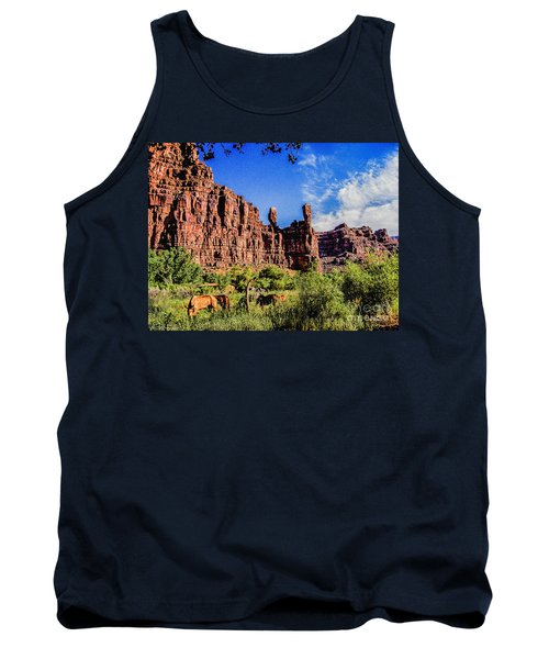 Private Home Canyon Dechelly Tank Top by Bob and Nadine Johnston