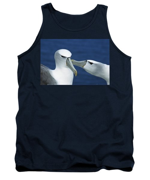 White-capped Albatrosses Courting Tank Top by Tui De Roy