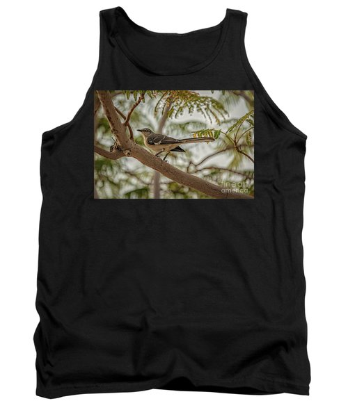 Mockingbird Tank Top by Robert Bales