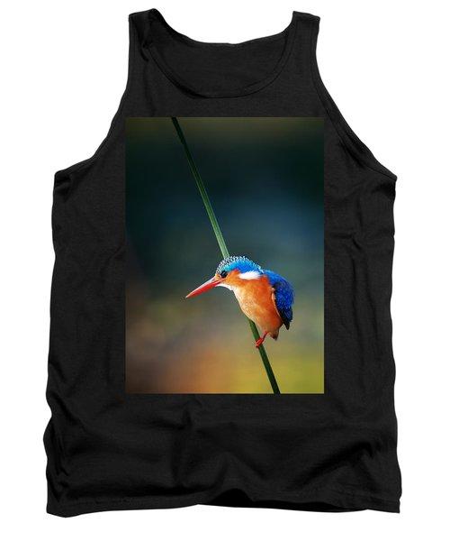 Malachite Kingfisher Tank Top by Johan Swanepoel