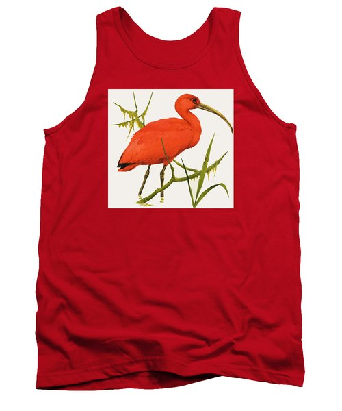 A Scarlet Ibis From South America Tank Top by Kenneth Lilly