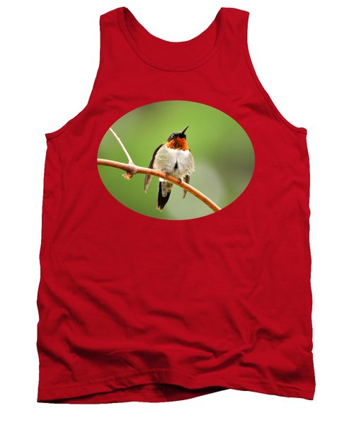 Male Ruby-throated Hummingbird Tank Top by Christina Rollo