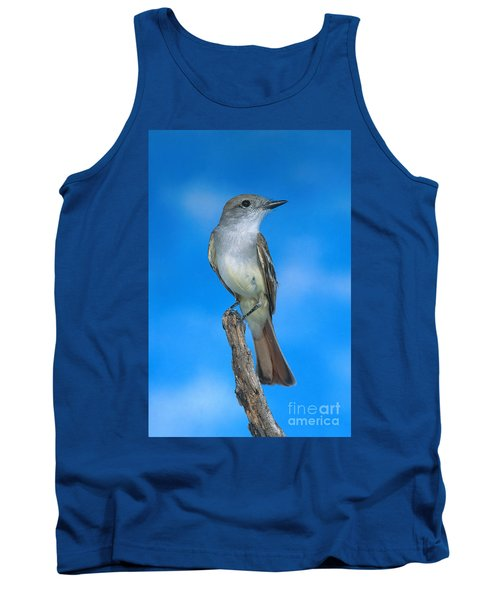 Ash-throated Flycatcher Tank Top by Anthony Mercieca
